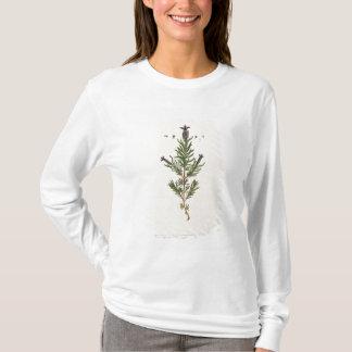 T-shirt La lavande française, plaquent 241 'd'un Herbal