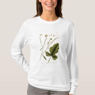 """T-shirt La moutarde, plaquent 446 """"d'un de fines herbes"""