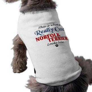 T-shirt La Norfolk Terrier
