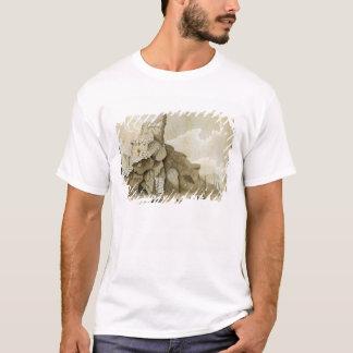 T-shirt La roche de Quang-Yin