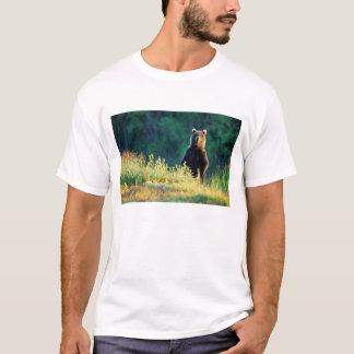 T-shirt La Russie, le Kamtchatka, ours gris de Kroska