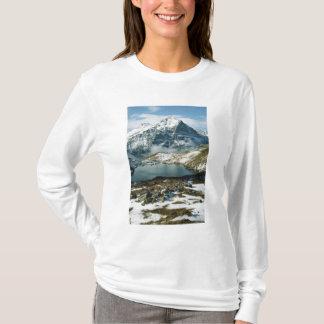 T-shirt La Suisse, Grindelwald, Alpes de Bernese, vue