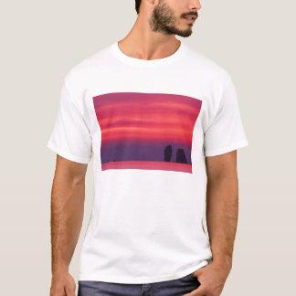 T-shirt La Thaïlande, baie de Phang Nga. Ciel rose reflété