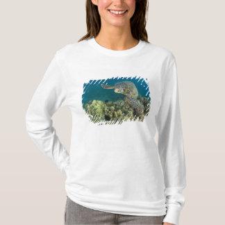 T-shirt La tortue de mer verte, (des mydas de Chelonia),