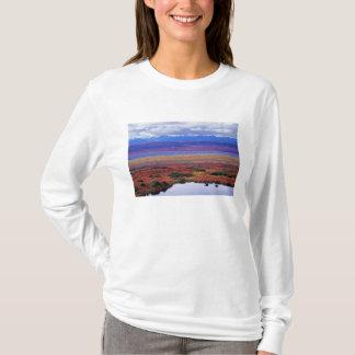 T-shirt La toundra du parc national de Denali vers la fin
