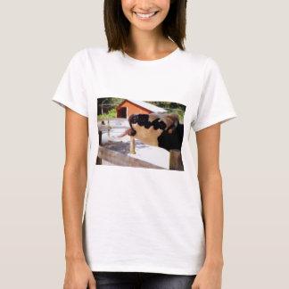 T-shirt La vache le collant est langue pour le maïs éclaté