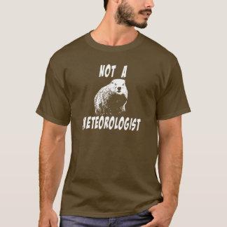 T-shirt La vérité au sujet de Groundhogs