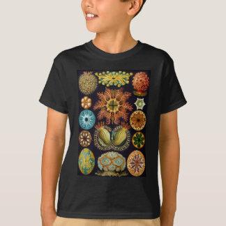 T-shirt La vie d'océan d'Ascidiae d'Ernst Haeckel