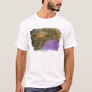 T-shirt La vie sous-marine ; POISSONS : Clownfish (rose