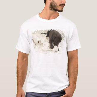 T-shirt Labrador brun chocolat