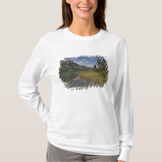 T-shirt Lac waterfowl le long de la route express de