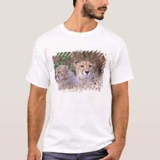 T-shirt L'Afrique, Afrique du Sud, réservation de Tswalu.
