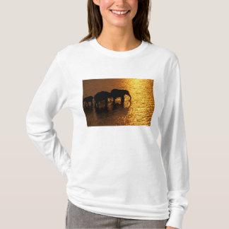 T-shirt L'Afrique, Botswana, delta d'Okavango. Africain