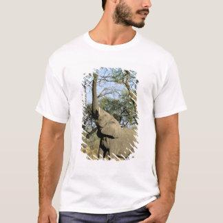 T-shirt L'Afrique, Botswana, delta d'Okavango. Africain 2