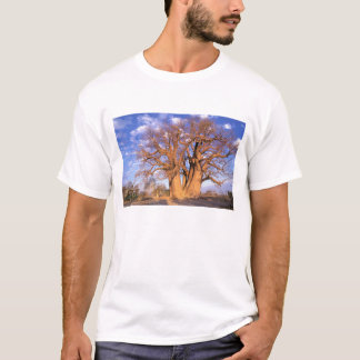T-shirt L'Afrique, Botswana, delta d'Okavango. Baobab