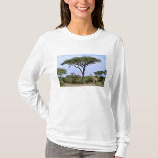 T-shirt L'Afrique, Botswana, delta d'Okavango. Du sud