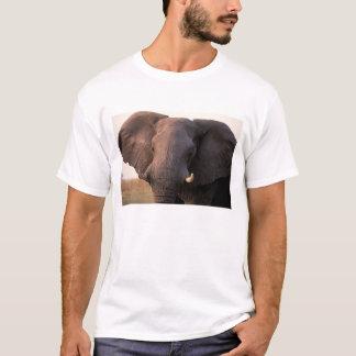 T-shirt L'Afrique, Botswana, delta d'Okavango. Éléphant