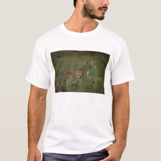 T-shirt L'Afrique, Botswana, delta d'Okavango. Léopard