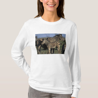 T-shirt L'Afrique, Botswana, parc national de Chobe,