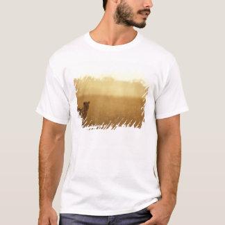 T-shirt L'Afrique, Botswana, réservation de jeu de Moremi,