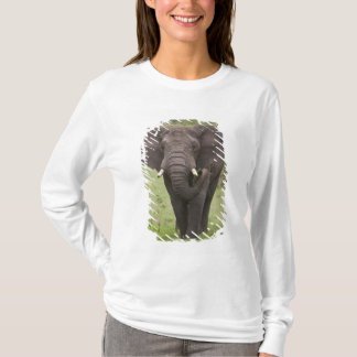 T-shirt L'Afrique. La Tanzanie. Éléphant au cratère de