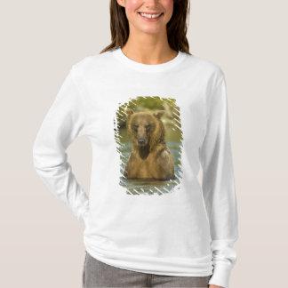 T-shirt L'Alaska. Katmai NP. Pêche côtière d'ours de Brown