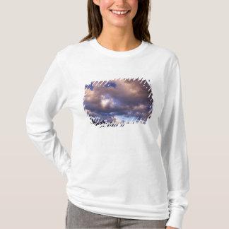 T-shirt L'Amérique du Nord, Canada, Alberta, jaspe 5
