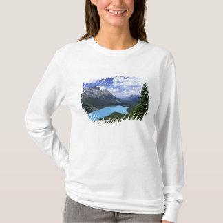 T-shirt L'Amérique du Nord, Canada, Alberta, jaspe 6