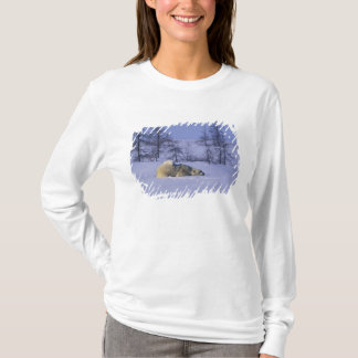 T-shirt L'Amérique du Nord, Canada, Manitoba, Churchill. 8