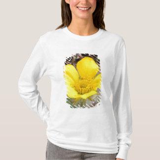 T-shirt L'Amérique du Nord, Etats-Unis, Alaska,