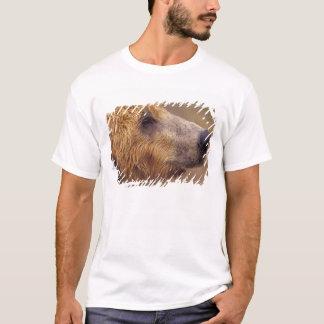 T-shirt L'Amérique du Nord, Etats-Unis, Alaska, Katmai NP.