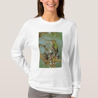 T-shirt L'Amérique du Nord, Etats-Unis, Alaska. Oiseau