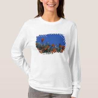T-shirt L'Amérique du Nord, Etats-Unis, la Californie,