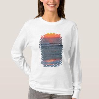 T-shirt L'Amérique du Nord, Etats-Unis, la Floride,