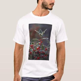 T-shirt L'Amérique du Nord, Etats-Unis, Nouvelle