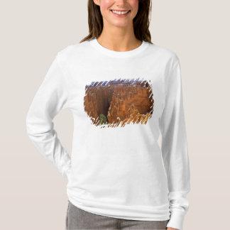 T-shirt L'Amérique du Nord, Etats-Unis, Utah, canyon 2 de