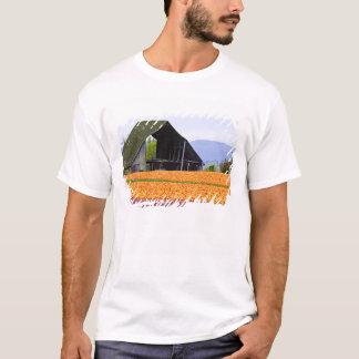 T-shirt L'Amérique du Nord, Etats-Unis, Washington, vallée
