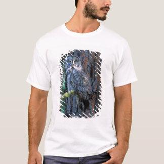 T-shirt L'Amérique du Nord ; LES Etats-Unis ; L'Orégon ;
