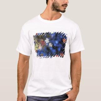 T-shirt L'Amérique du Nord, USA, NH, feuille dans un étang