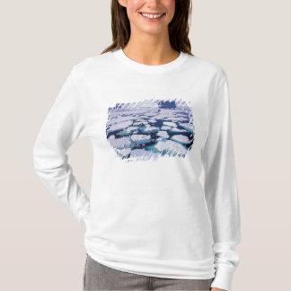 T-shirt L'Antarctique, écoulement de glace
