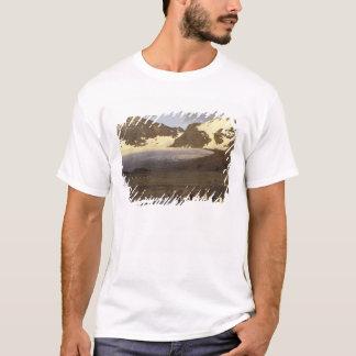 T-shirt L'Antarctique, île du sud de la Géorgie. Pingouins
