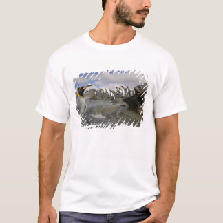 T-shirt L'Antarctique, île du sud de la Géorgie (R-U),