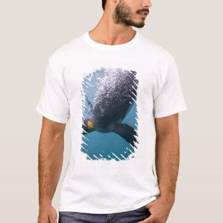 T-shirt L'Antarctique, île du sud de la Géorgie (R-U), 3