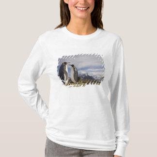 T-shirt L'Antarctique, île du sud R-U de la Géorgie), roi
