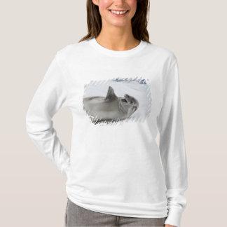 T-shirt L'Antarctique, péninsule antarctique, ANTARCTIQUE