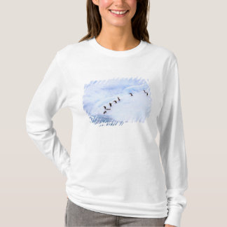 T-shirt L'Antarctique, péninsule antarctique. Jugulaire