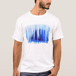 T-shirt L'Antarctique, territoire antarctique australien.