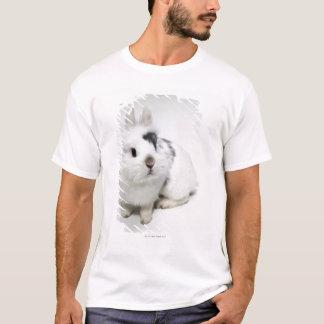 T-shirt Lapin blanc, noir et brun