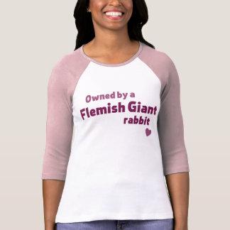 T-shirt Lapin géant flamand