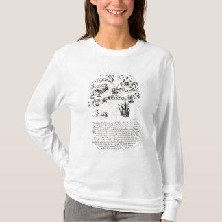 T-shirt L'arrivée des Anglais en Virginie